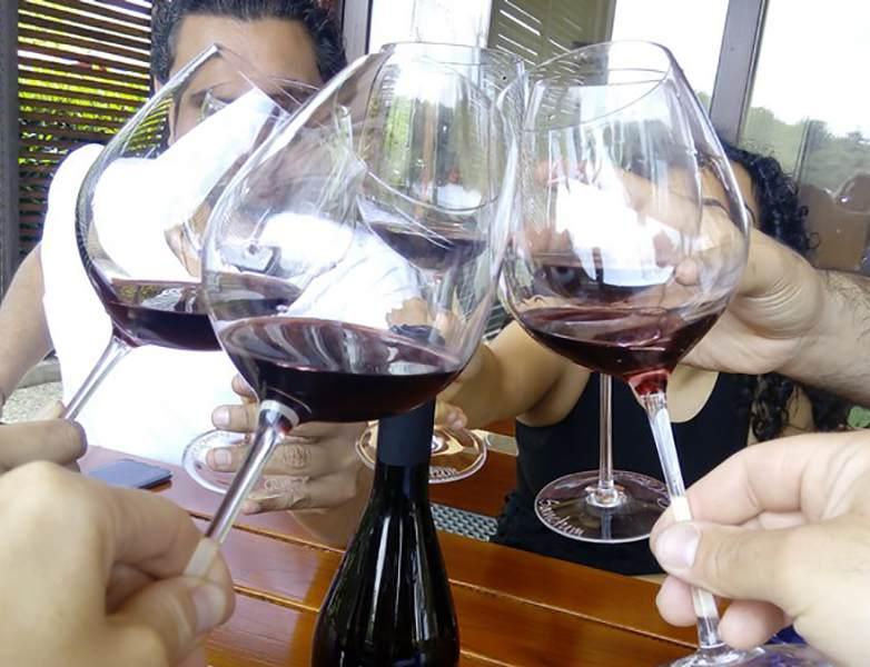 Wine-Tours-Slovenia