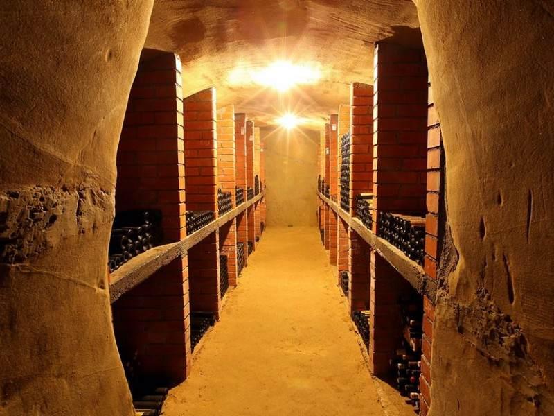 Wine-Tours-Slovenia-Bizeljsko-wine-region-00004