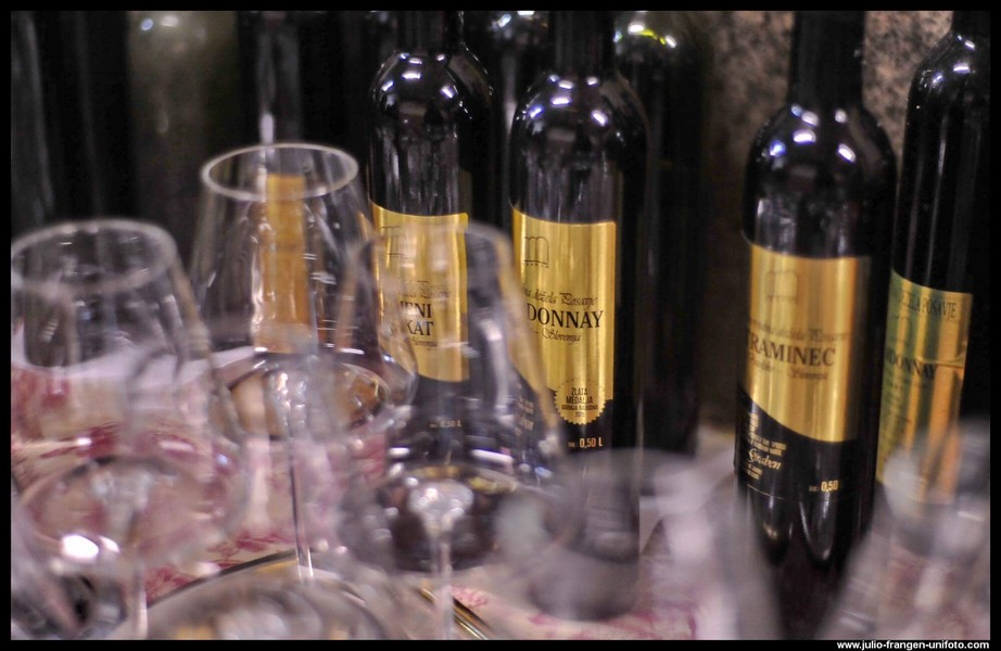 Wine tasting Slovenia, Bizeljsko wine region, Graben premium wines