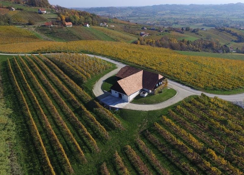 Wine tours Slovenia, Istenic wine cellar, sparkling wine producer