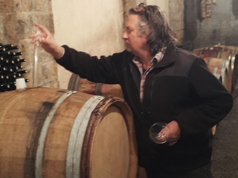 Wine tour to Karst wine region, tasting wine from the barrel
