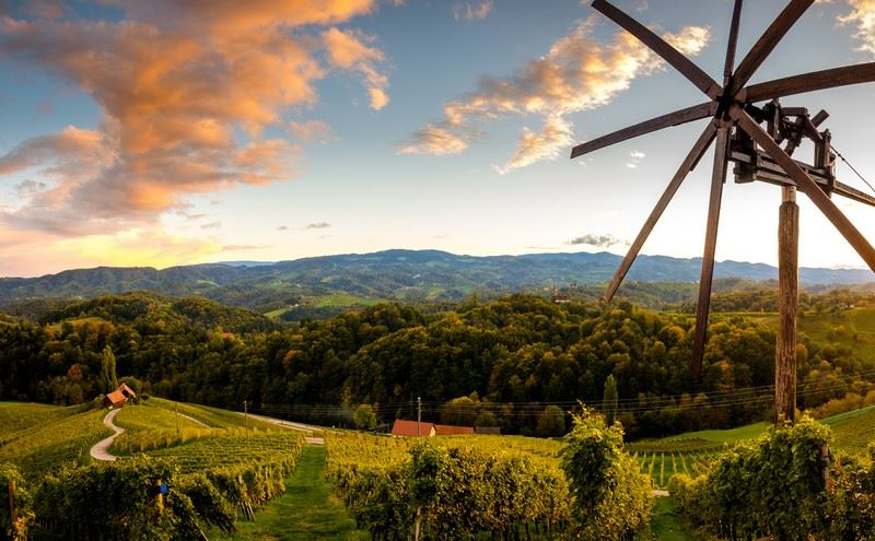 Slovenia, A Wine Making Country